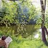 Der Zeitungsleser - Stadtpark Stuttgart