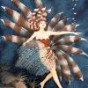 Mermaid Pterois - Rotfeuerfisch