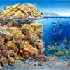 Unterwasserwelt Mittelmeer
