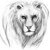 Löwendame - Bleistift