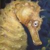 Seepferdchen im Tangwald - Aquarell