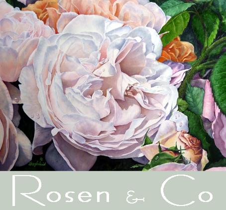 Rosen & Botanik
