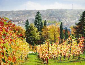 Grusskarte Herbstlicht, Weinberg Karlshoehe (Stuttgart)