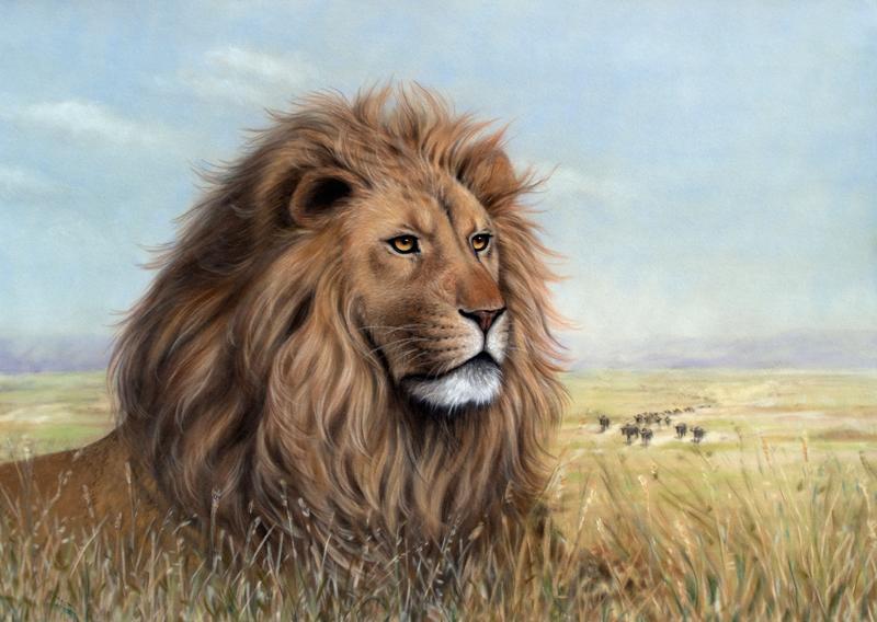 Löwe in der Serengeti Fine-Art-Print