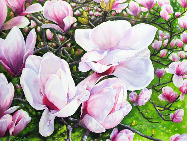 Magnolientraum Fine-Art-Print