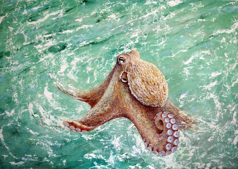 Oktopus-web