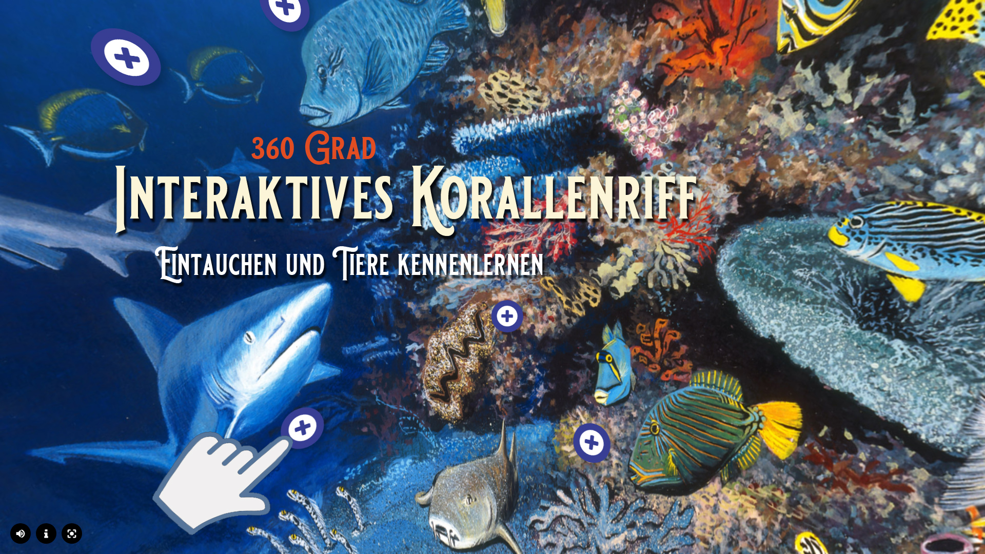 360° - Interaktives Korallenriff